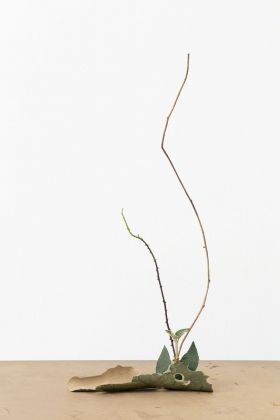 Martina della Valle, One flower, One leaf #3 (Bozen), 2018 © Martina della Valle, Courtesy Metronom