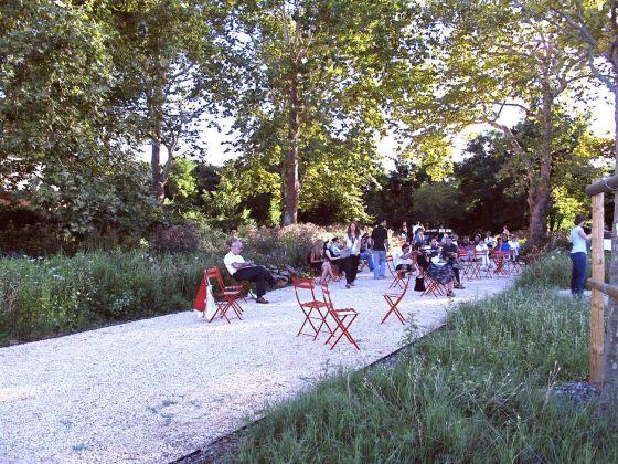 Piet Oudolf Gardens, Giardino delle Vergini, Biennale di Venezia. Photo Claudia Zanfi
