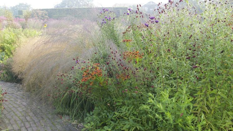 Piet Oudolf Gardens, Hummelo. Photo Claudia Zanfi