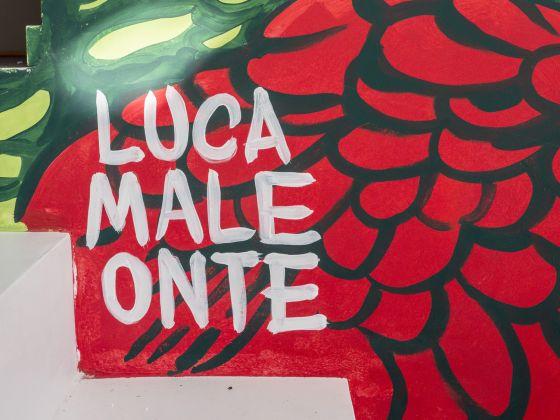 Lucamaleonte © Giorgio Zanetti http://www.zanettifoto.it https://www.instagram.com/zntgrg/
