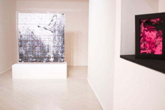Exhibition D View : Valentina colella in mostra a milano artribune