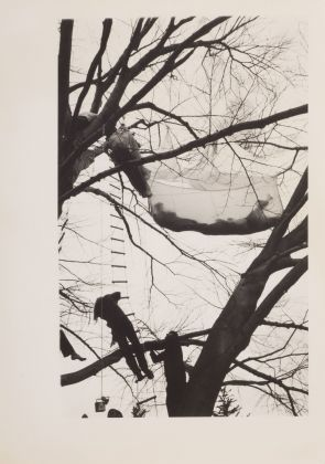 Gordon Matta-Clark, Tree Dance, Untitled, 1971, 5 fotografie vintage in bianco e nero stampate su carta ai sali d'argento. Courtesy Harold Berg