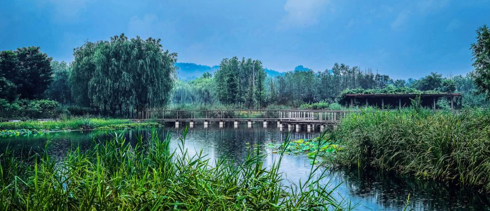 JIAHE RIVER COUNTRY PARK IN RESPONSE TO URBAN FLOOD RISK, BEIJING FORESTRY UNIVERSITY, from China