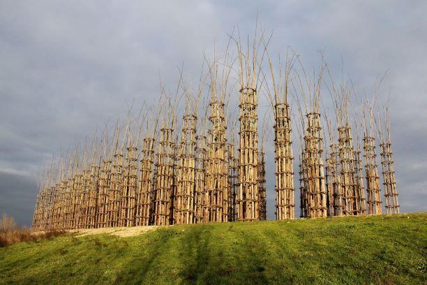 Cattedrali vegetali @ Archivio Giuliano Mauri