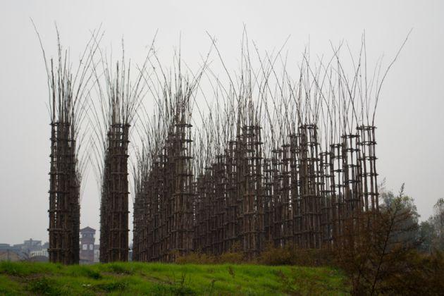 Cattedrale vegetale @ Ass. Giuliano Mauri. Foto Deila del Grande