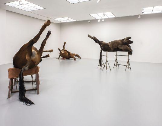 Berlinde De Bruyckere. M HKA - Museum of Contemporary Art, Anversa