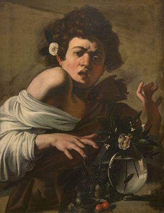 Caravaggio, Fanciullo morso da un ramarro, 1596-1597 ca. Fondazione di Studi di Storia dell'Arte Roberto Longhi, Firenze
