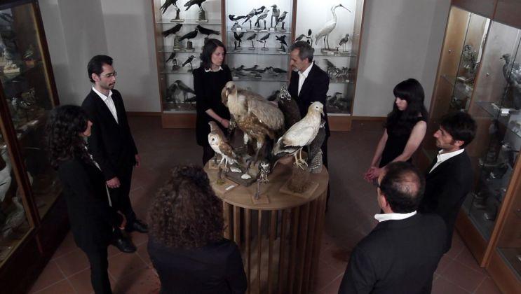 Fonte & Poe, La giostra dell'avvicinamento (rituale per 8 persone e 8 rapaci imbalsamati), 2015, still da video
