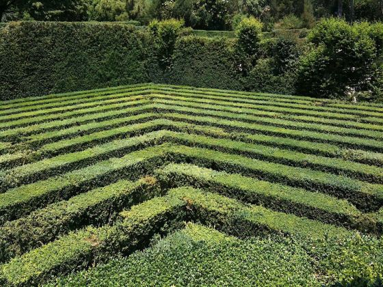 Giardino labirinto Valsanzibio, Colli Euganei. Photo Claudia Zanfi