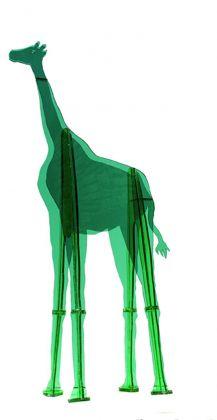 Gino Marotta, Giraffa artificiale, 1972