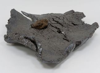 Markus Karstiess, Scholar's Rocks, 2018