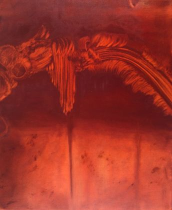 Marta Sforni, Mirror Fenice III, 2017, olio su tela, 76 x 62 cm
