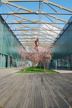 Riqualificazione uffici, Milano, 2013. Photo Andrea Bortolotti. Courtesy AG&P greenscape