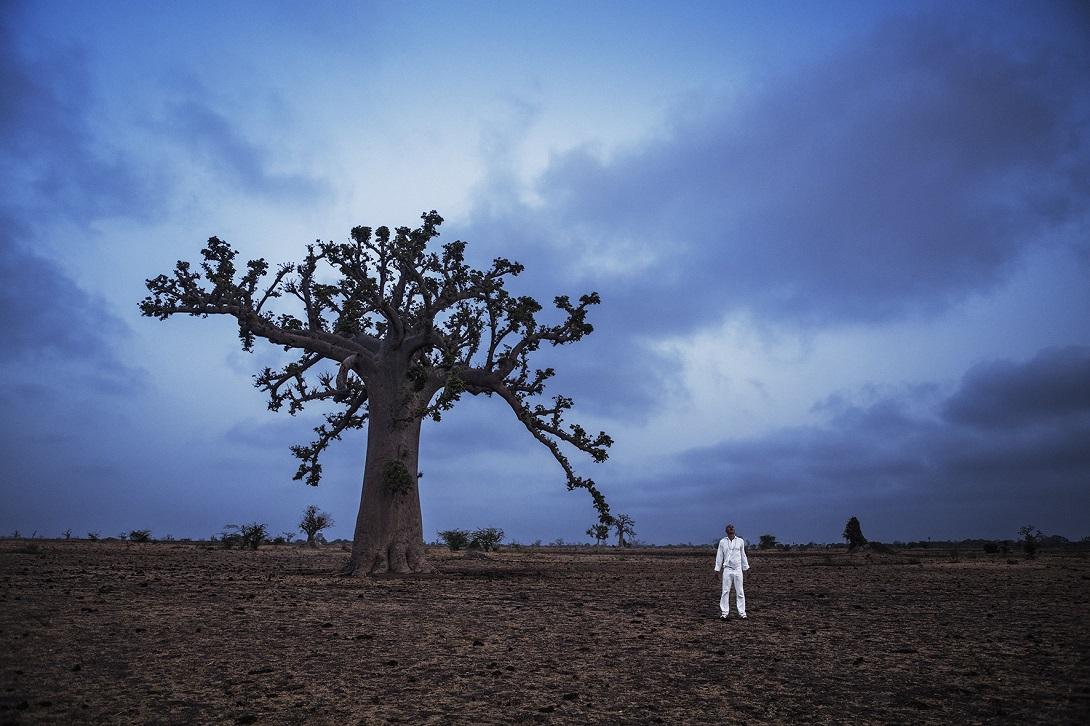 'História do futuro, Baobá o capítulo da agromancia', 2015, by Ayrson Heráclito. Courtesy of Portas Vilaseca