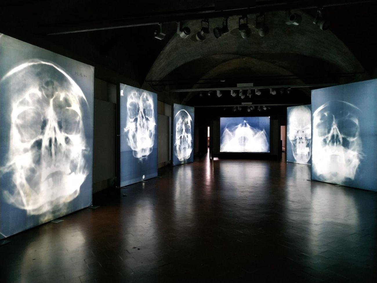 Antonello Fresu. Der Körper. Installation view at Palazzo dei Pio, Carpi 2019