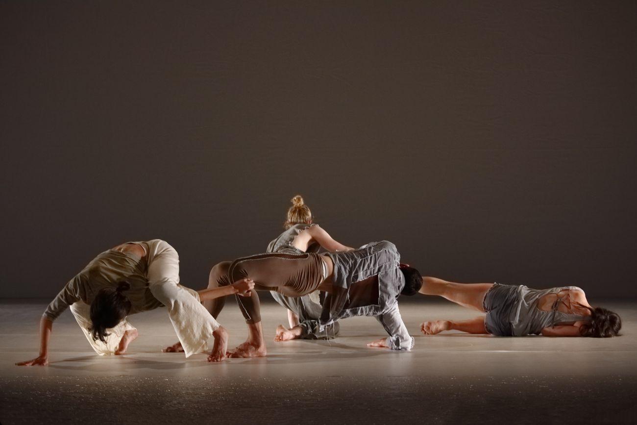 Compagnia Simona Bertozzi, Nexus. Joie de vivre. Photo Luca Del Pia