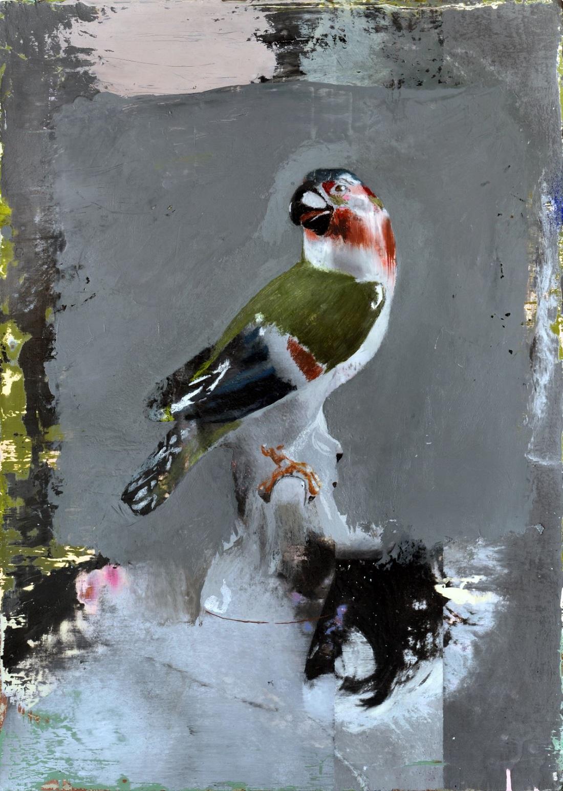Cristiano Tassinari, Perrot, Oil on canvas, 50x70cm, 2018