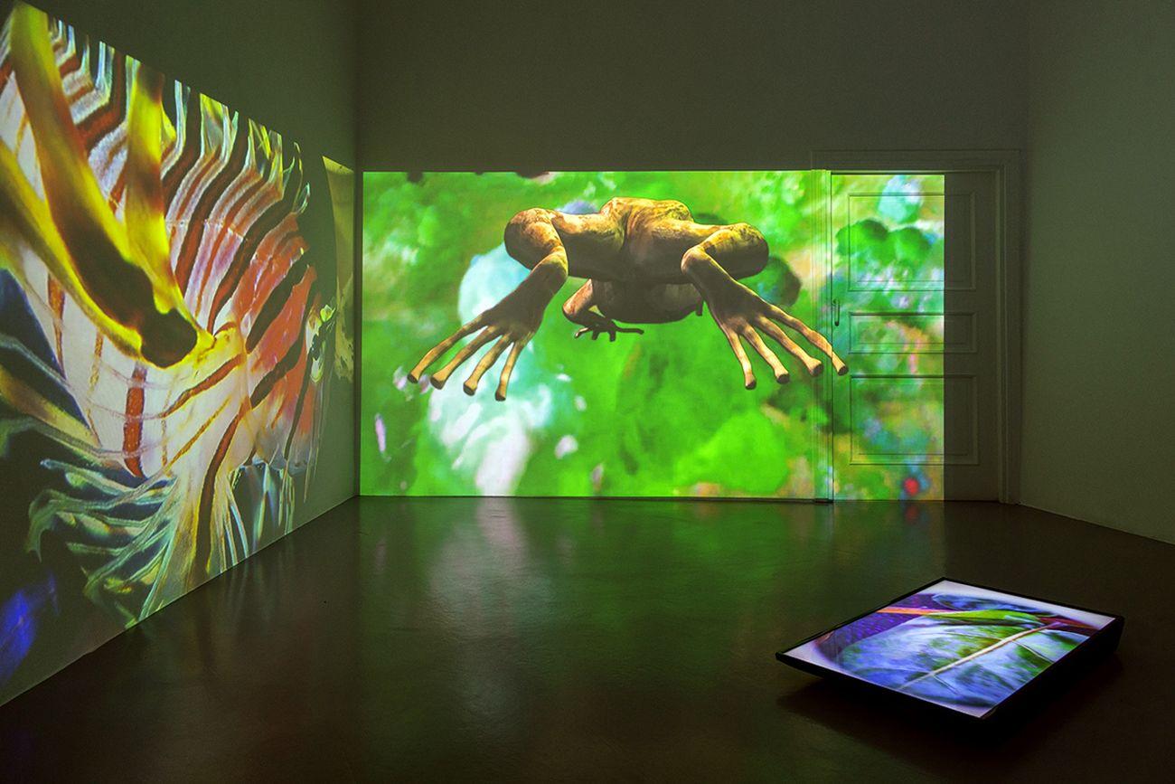 Eva Papamargariti, Precarious Inhabitants, 2017, , installation view at Galleria Umberto Di Marino, Napoli 2019