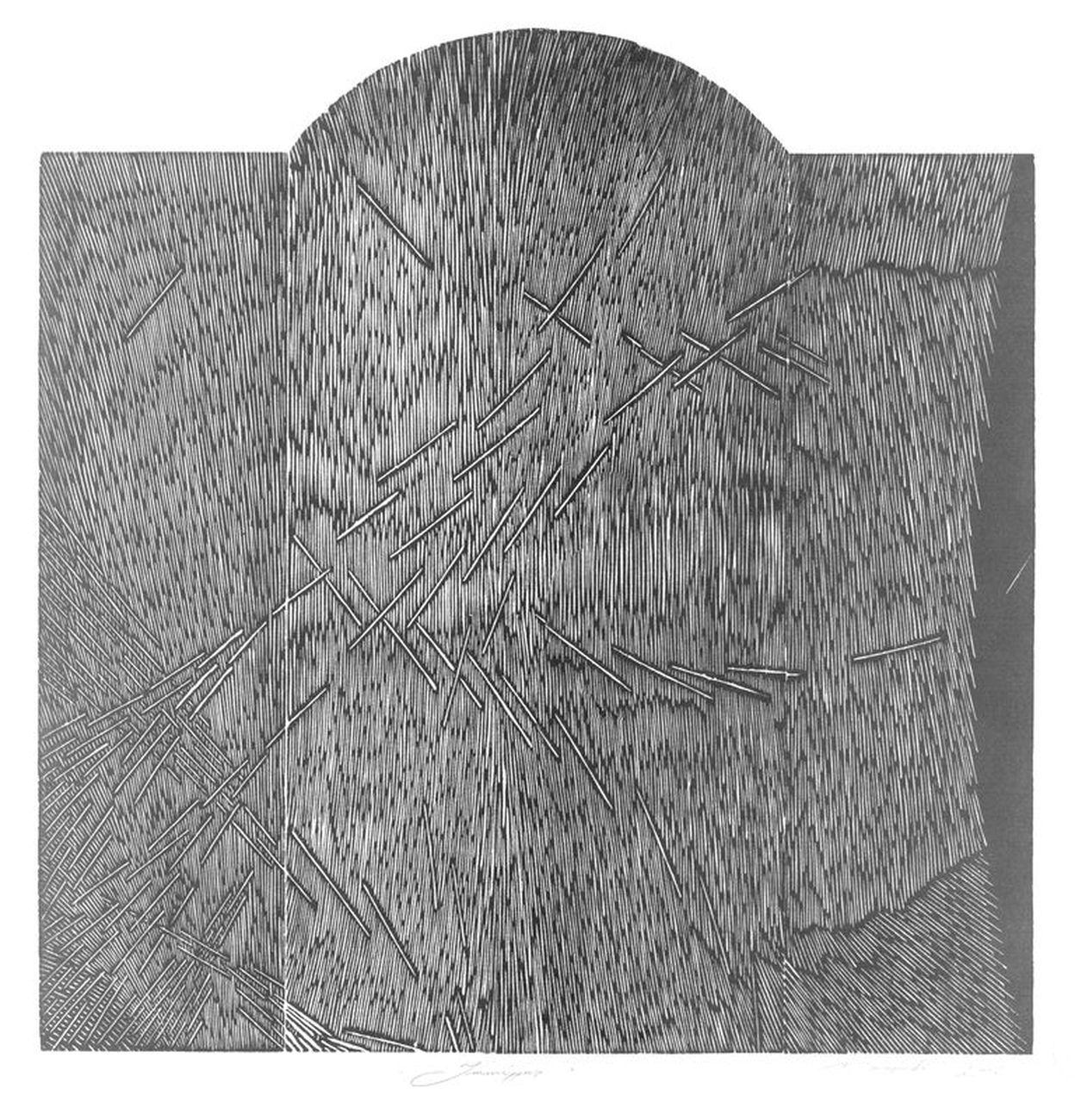 Gianluca Murasecchi, Immissus, 2005. Gabinetto delle Stampe Antiche e Moderne, Bagnacavallo