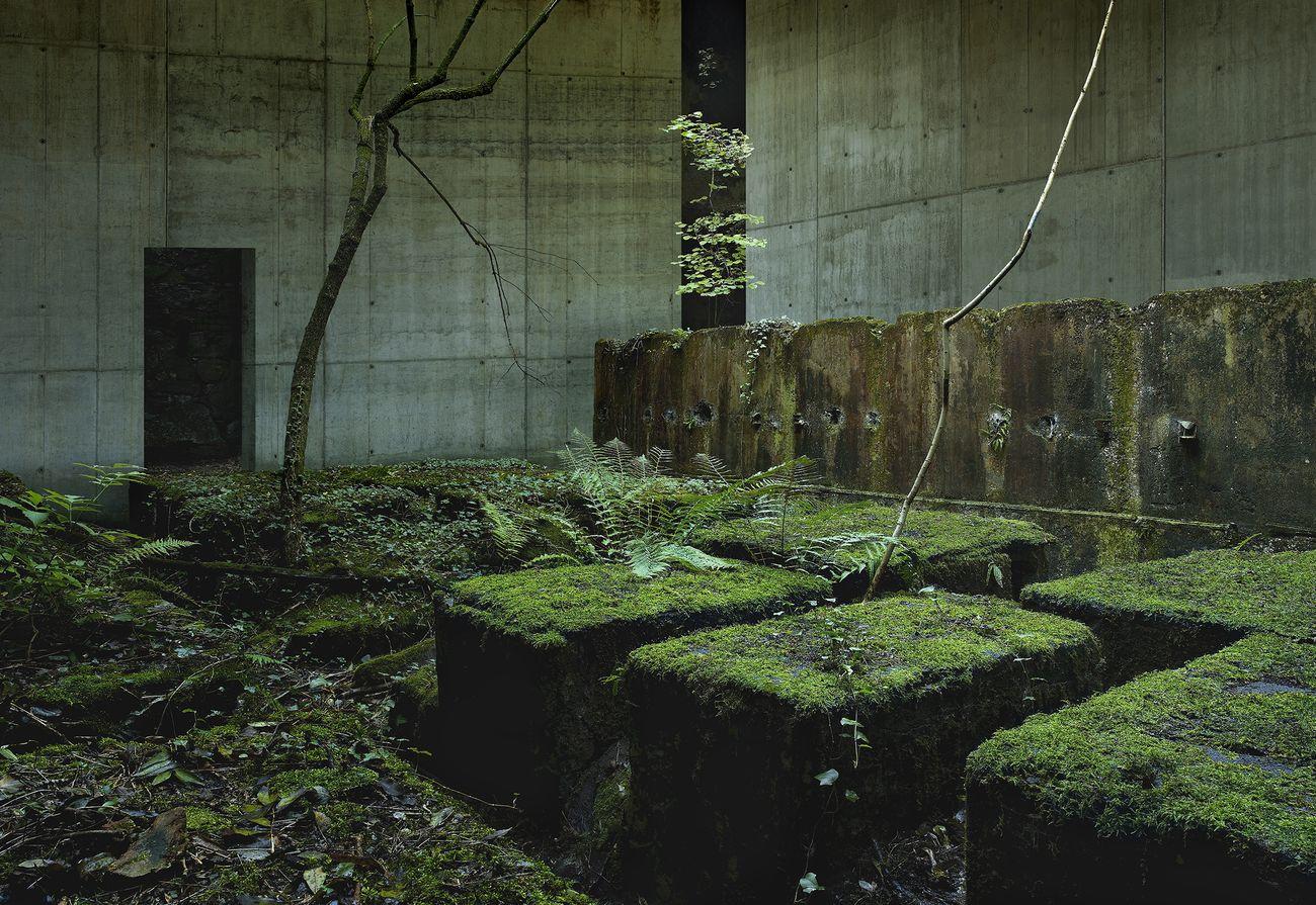 Gioberto Noro, Civilizations D Zone #1, 2006. Courtesy Galleria Alfonso Artiaco, Napoli