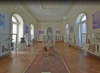 Museo Nazionale del Brasile, Google Museum View