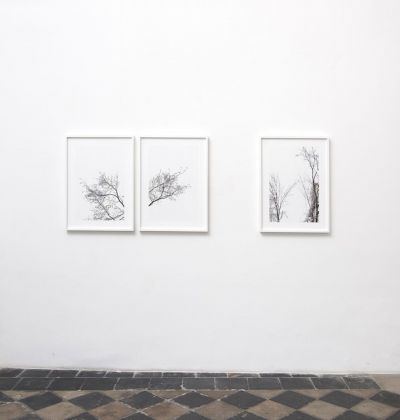 Paola De Pietri. Apèrto. Installation view at 1/9 unosunove gallery, Roma 2019. Photo credit Giorgio Benni