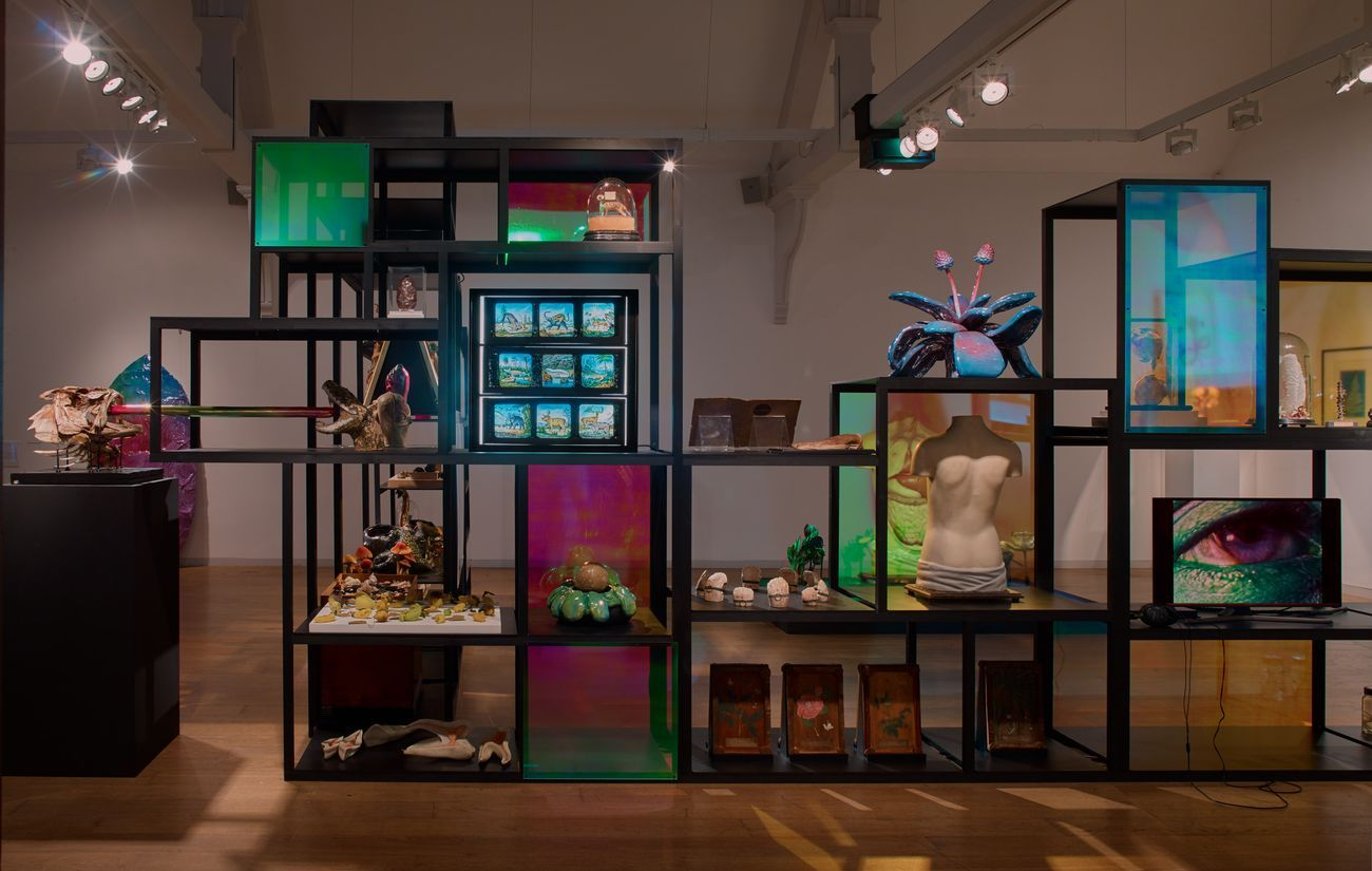 Surreal Science. Loudon Collection with Salvatore Arancio. Installation view at Whitechapel Gallery, Londra 2018. Photo Stephen White. Courtesy of the artist & Federica Schiavo Gallery