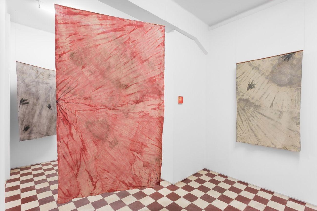 Catarina de Oliveira. Fire Years to Burn, 2018. Installation view at Monitor, Lisbona. Photo credits Bruno Lopes. Courtesy the artist & Monitor Roma Lisbona