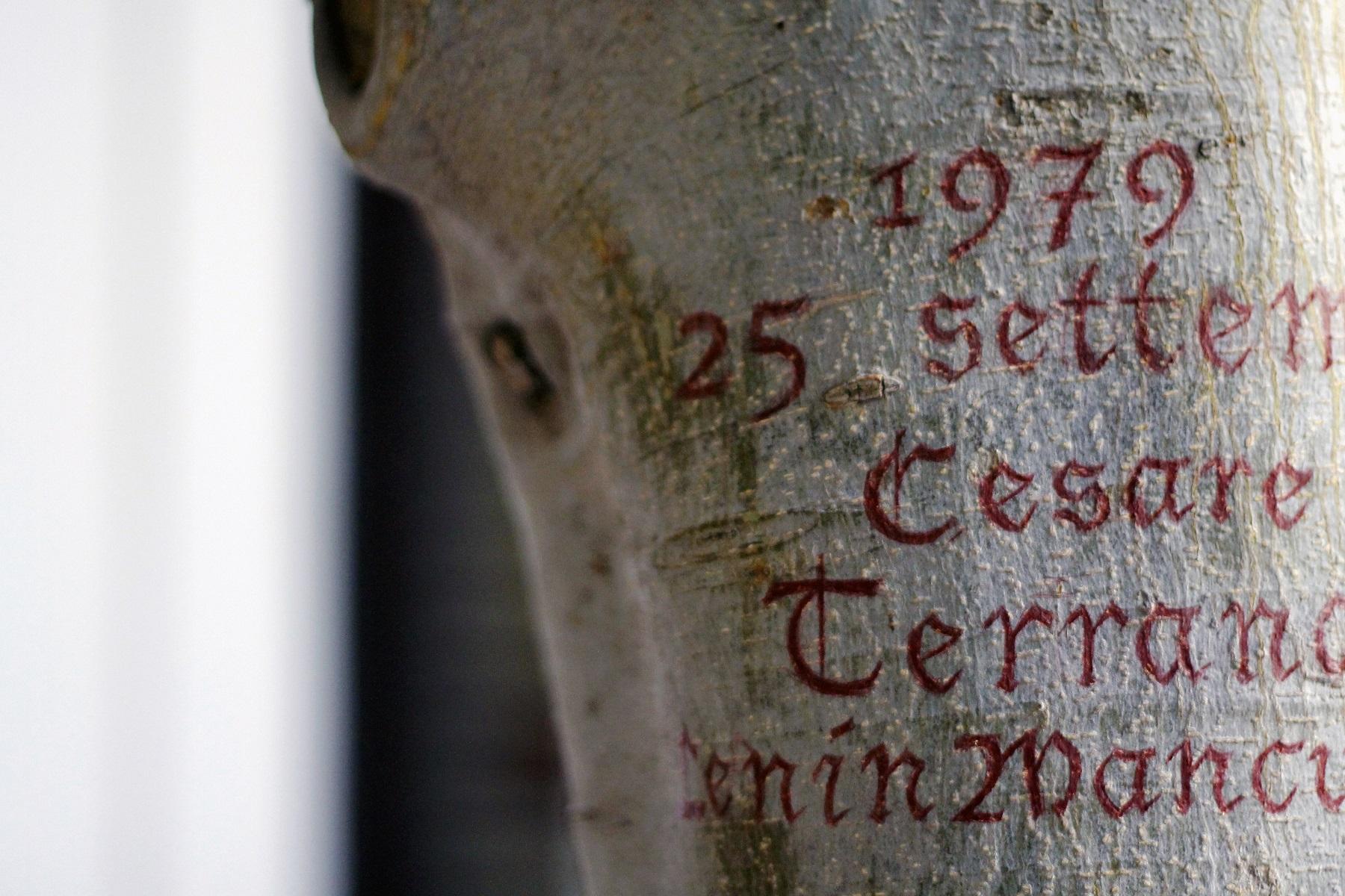 Goldschmied & Chiari_Genealogia di Damnatio Memoriae, Palermo 1947 1992