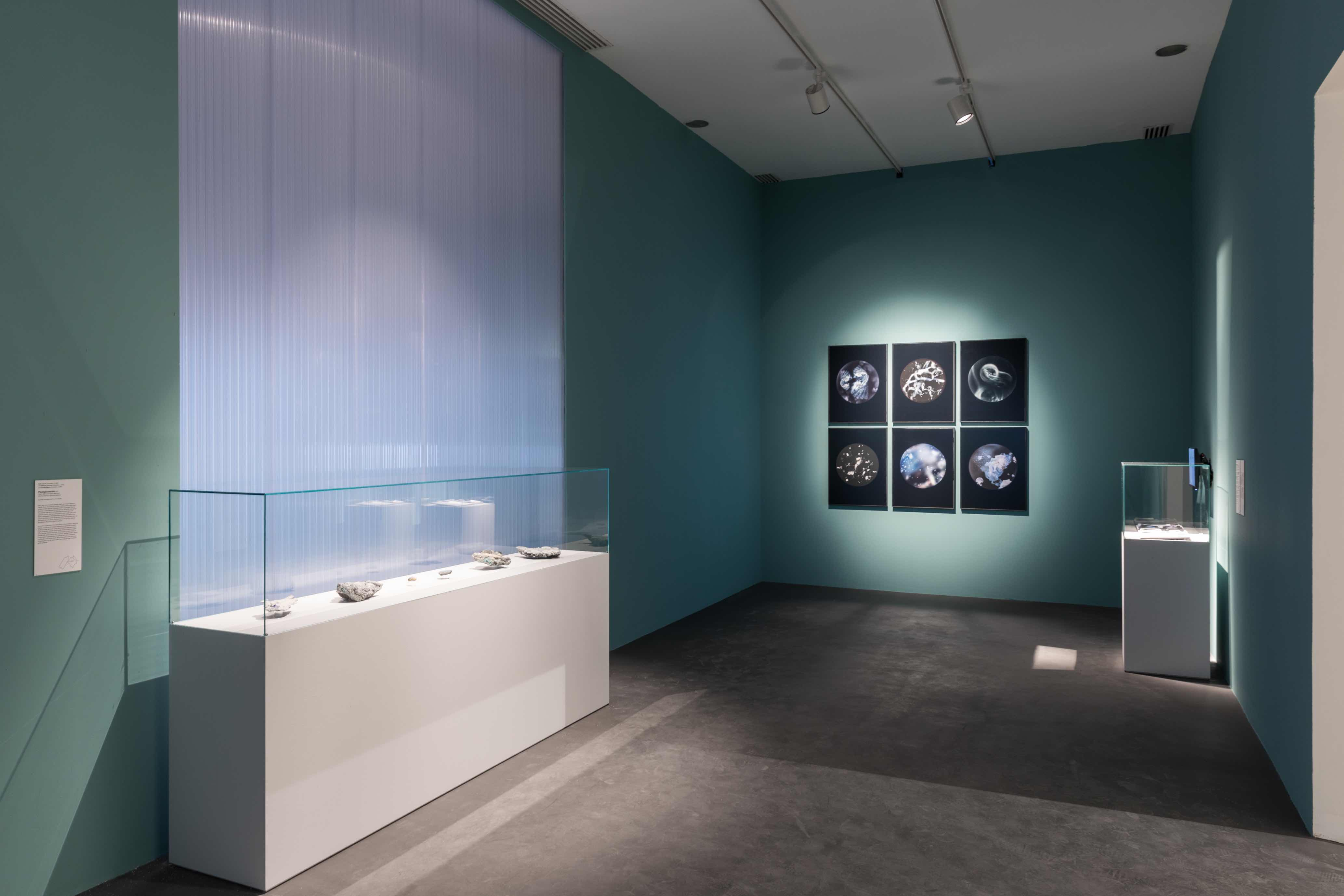 Instalaltion view_Broken Nature © La Triennale di Milano - foto Gianluca Di Ioia