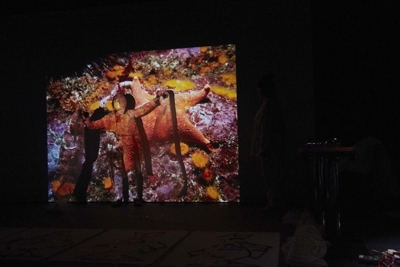 Joan Jonas, Moving Off the Land, 2016-17. Performance con María Huld Markan al Sequences art festival, Reykjavík 2017. Courtesy the artist & Gavin Brown's Enterprise, New York-Roma. Photo Elísabet Davíðsdóttir