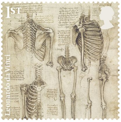 The skeleton, c.1510–11 Pen and ink with wash, Amgueddfa Cymru/National Museum Wales, Cardiff. Courtesy Royal Mail