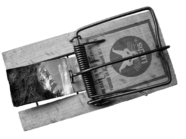 Lucius Burckhardt, Die Landschaftsfalle (La trappola ambientale), 1986, edizione limitata realizzata per la Gallerie Eisenbahnstrasse di Berlino – Courtesy Quodlibet
