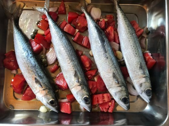 Mackerel and summer tomatoes. Image courtesy of Mina Stone