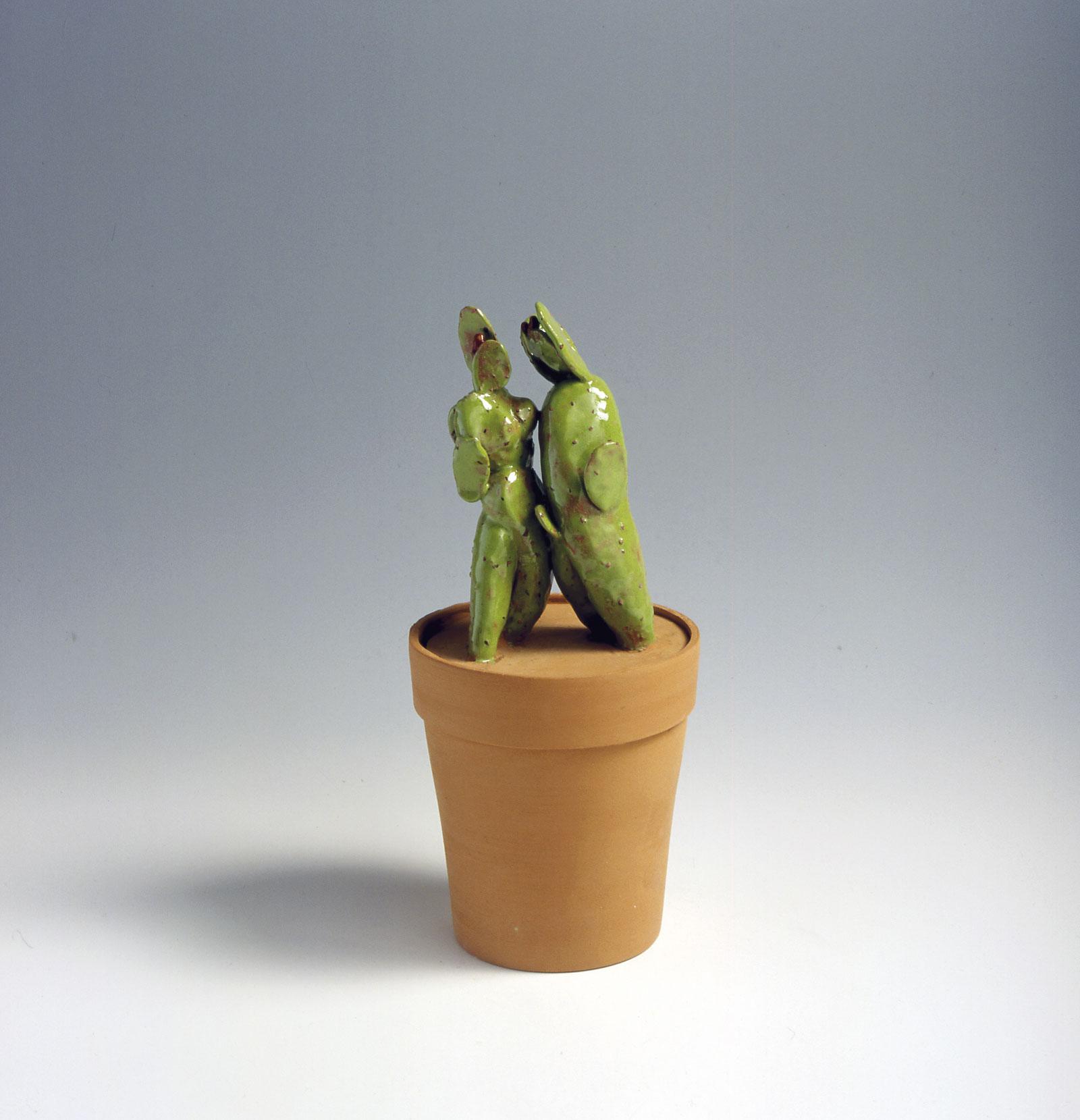 5 Vie Cactus Ugo La Pietra