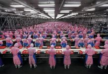 Edward Burtynsky, Manufacturing #17, Deda Chicken Processing Plant, China, 2005 © Edward Burtynsky. Courtesy Metivier Gallery, Toronto & Flowers Gallery, Londra
