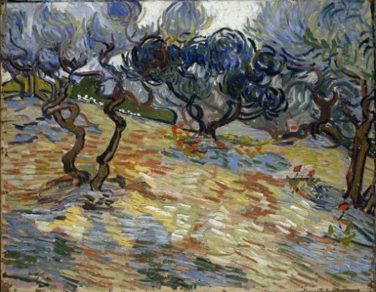 Vincent van Gogh, Olive Trees. National Galleries of Scotland
