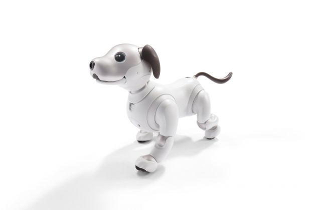 AI: More Than Human aibo © Sony corporation
