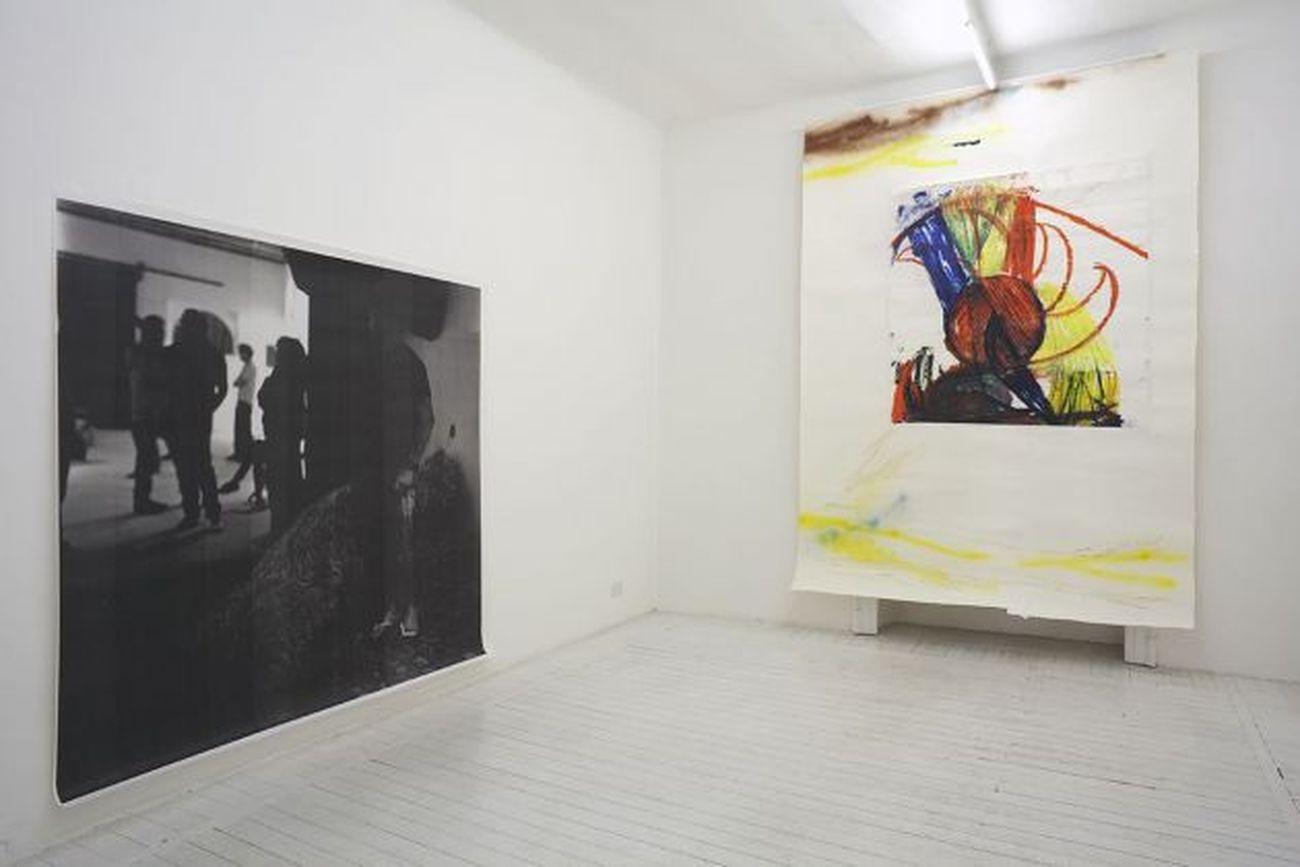 Pesce Khete. Horst der Künstler. Installation view at GAFF, Milano 2013. Photo Filippo Armellin