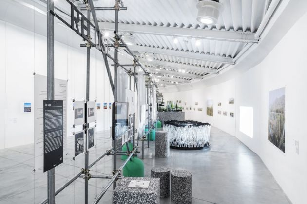 Verde Prato. Exhibition view at Centro Pecci, Prato 2019. Photo OKNOstudio