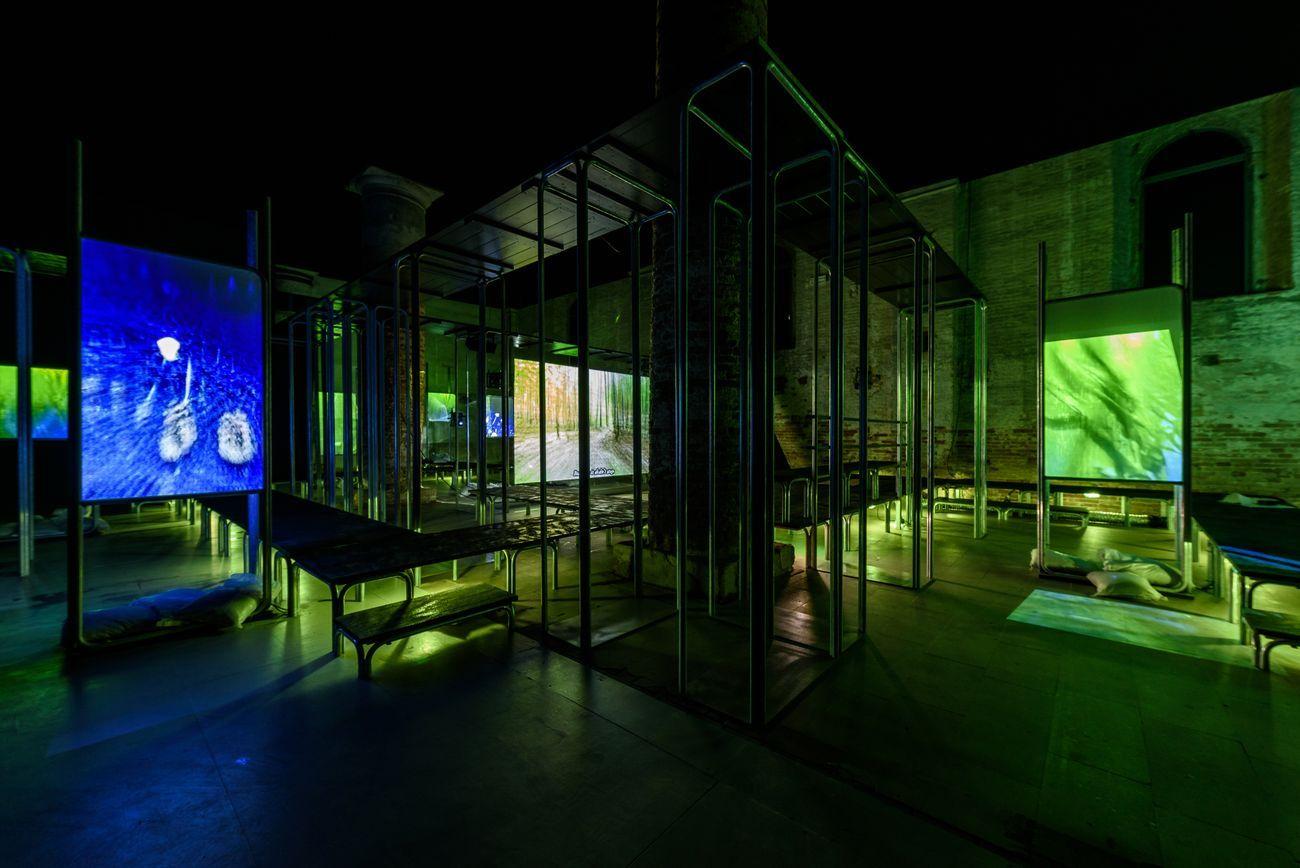 58. Biennale d'Arte di Venezia, 2019. Hito Steyerl. Photo Andrea Avezzù