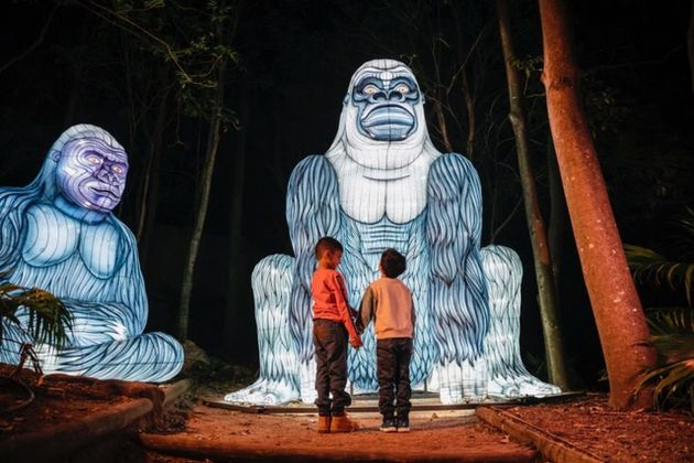 Vivid Sydney 2019. Taronga Zoo. Photo credit Destination NSW