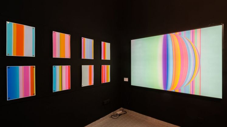 Cate Woodruff. Installation view at Fondazione Bartoli Felter, Cagliari 2019. Photo G. Marturana