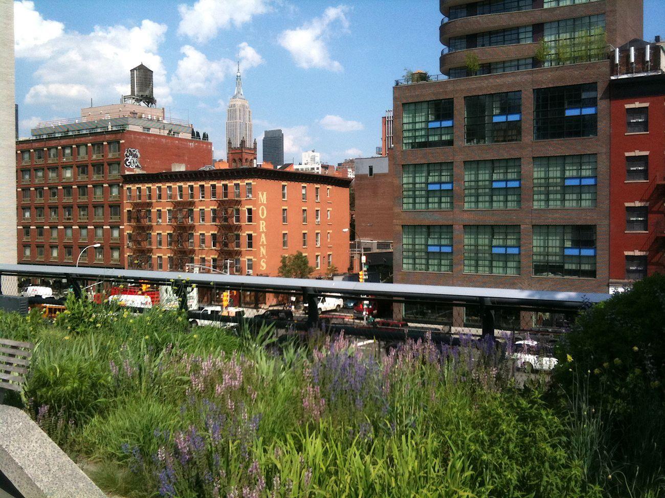 High Line, New York. Photo Claudia Zanfi