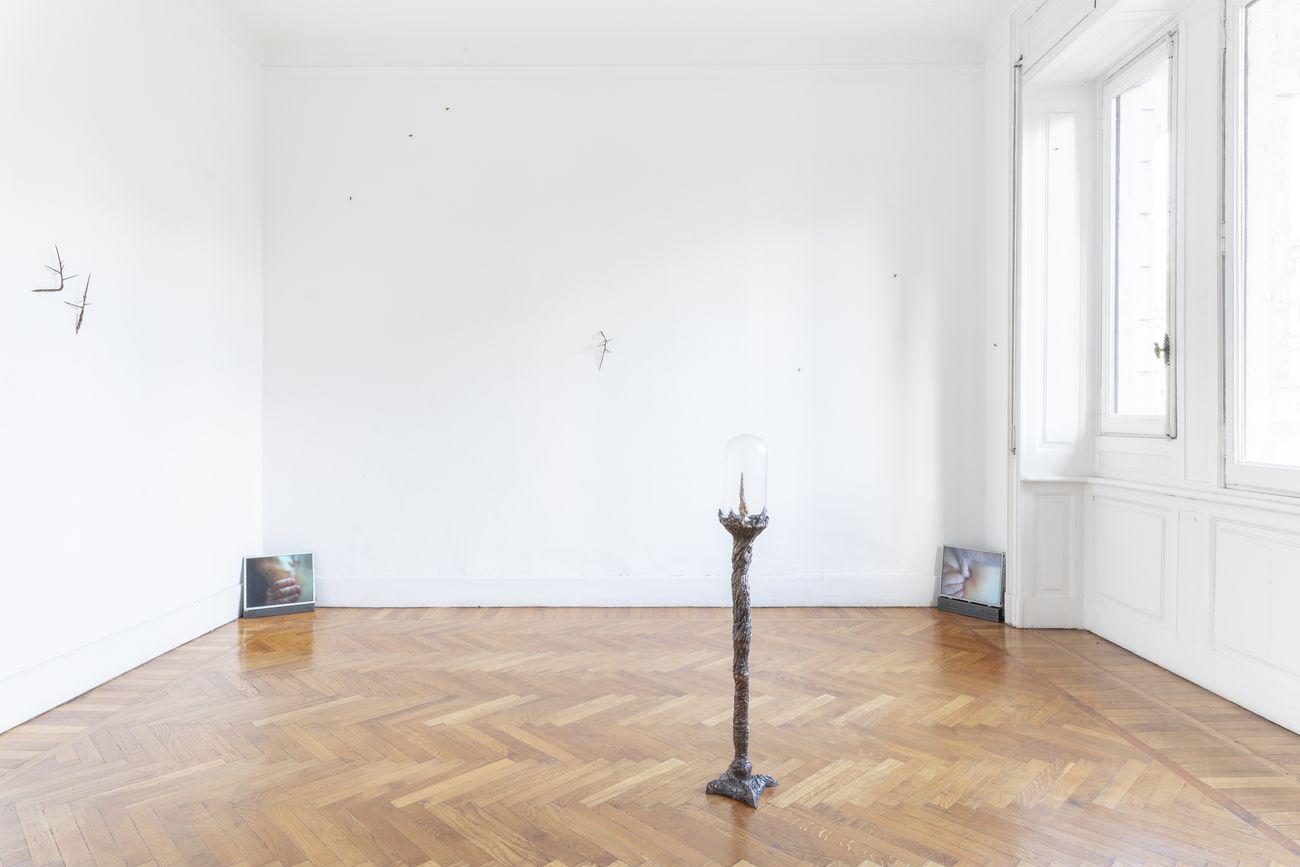 Matilde Sambo. Falsità in buona coscienza. Installation view at aA29 Project Room, Milano 2019. Photo credits Viviana Ginolfi