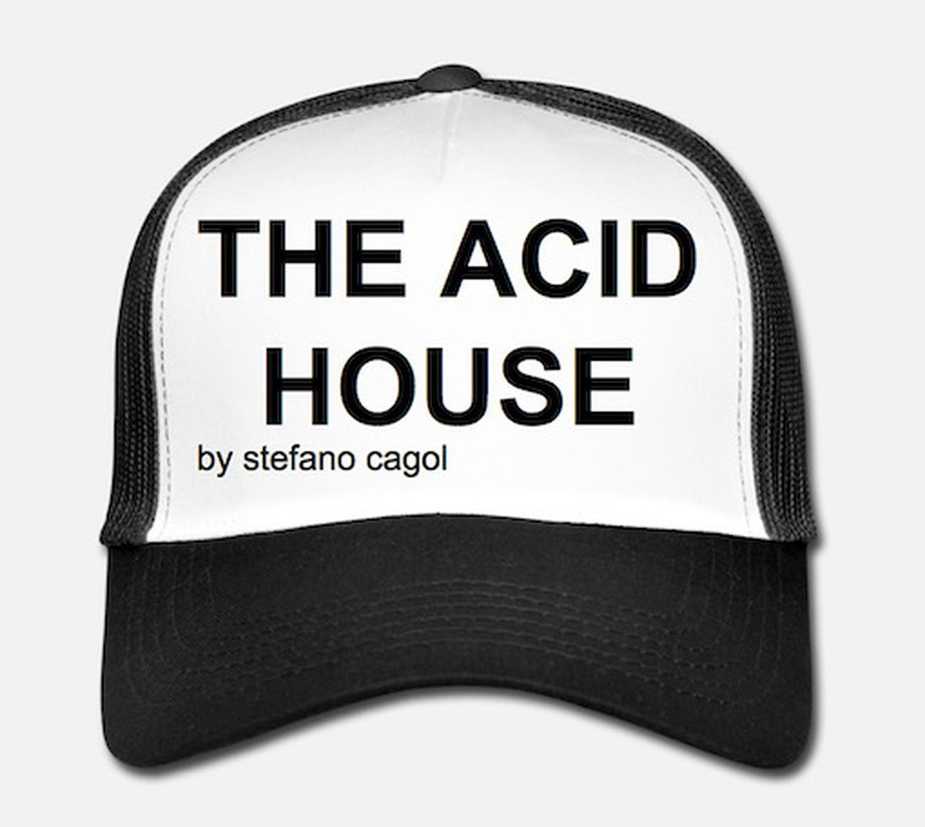 Stefano Cagol, The Acid House (Litmus Test), 2019