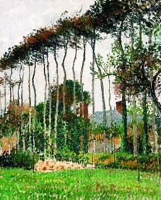 Camille Pissarro Les grands hêtres à Varengeville, 1899 Olio su tela, 64,8x54 cm Collezione Pérez Simón, Messico
