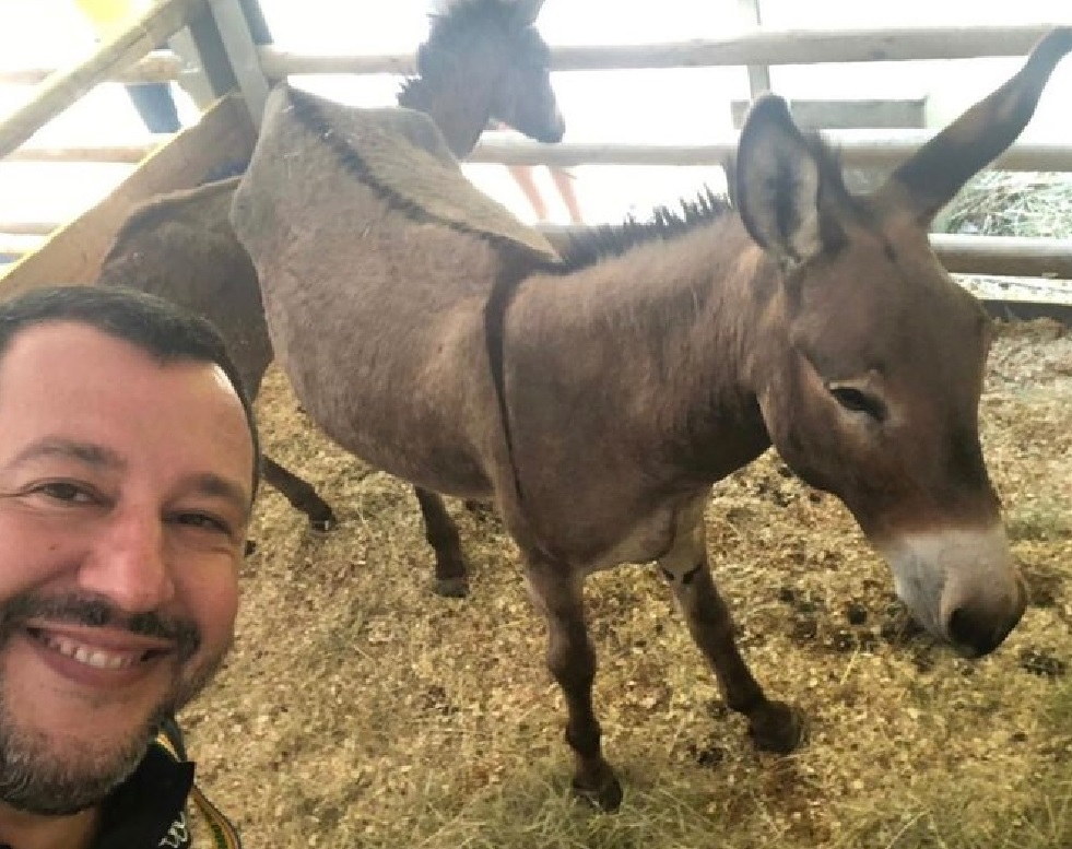 Matteo Salvini, Twitter (dettaglio)