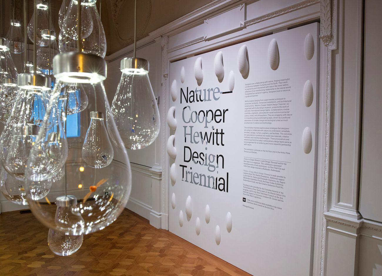 Nature. Cooper Hewitt Design Triennial 2019. Photo Matt Flynn © Smithsonian Institution