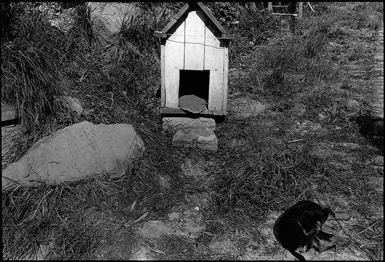 Il libro di fotografie di Guido Guidi in Sardegna | Artribune
